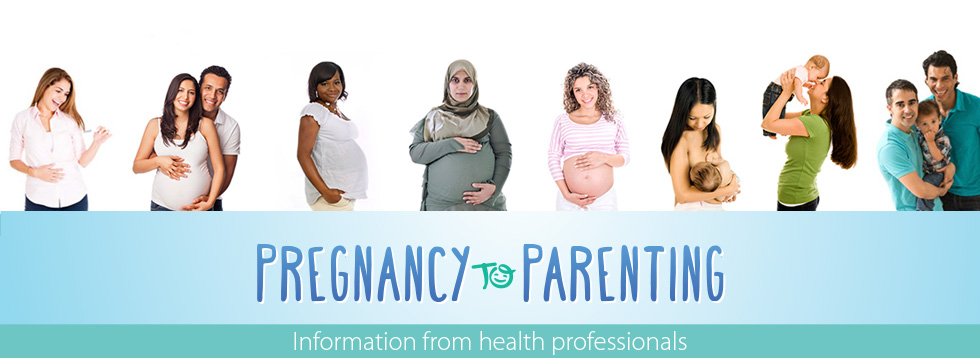 Pregnancy to Parenting banner