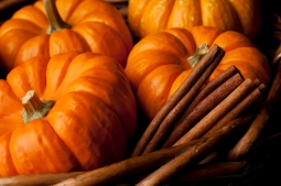 Pumpkins with cinnamon sticks