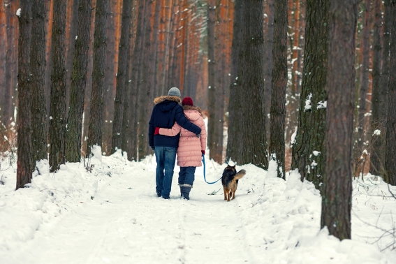 Young couple walking with dog in a snowy forest