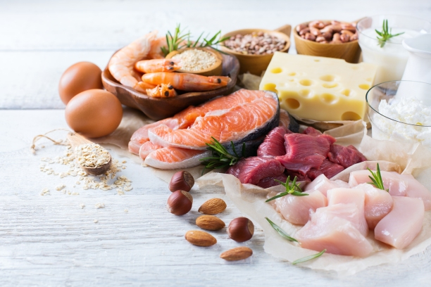 Variety of high protein foods