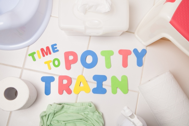Time to Potty Train your toddler.
