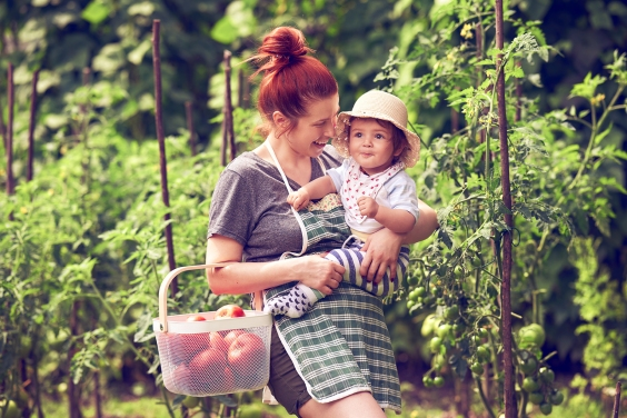 smiling parent carrying baby in vegetable garden, holding basket with tomatoes.