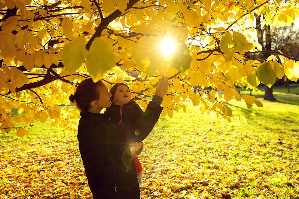 Parent carrying baby under a tree holding leaves in a park with Autumn colours in background